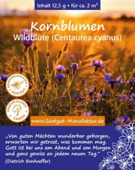 Kornblumen (Centaurea cyanus)