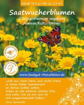 Saatwucherblumen (Chrysanthemum segetum)