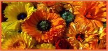 F7 - Blütensonne